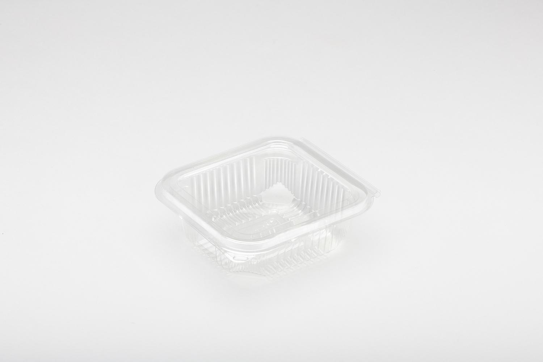 Contenitori in plastica con coperchio per alimenti